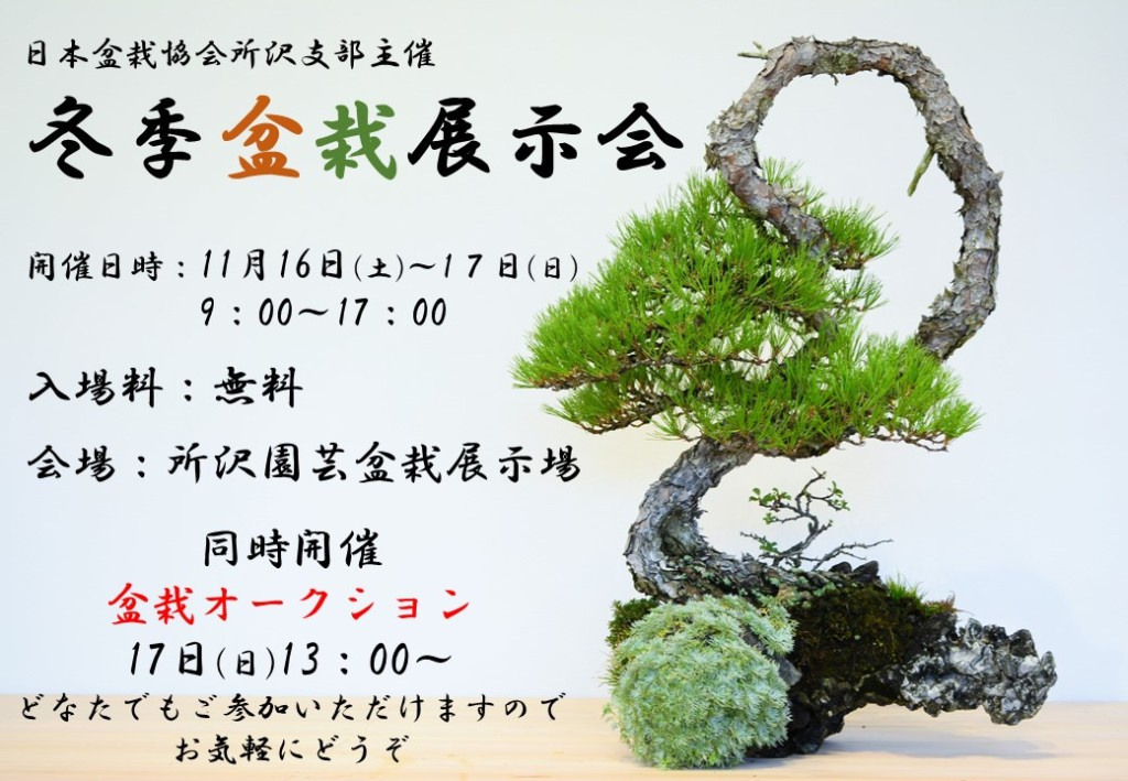 冬季盆栽展示会2018